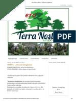 Terra Nostra_ MATICO - Artemisia Douglasiana