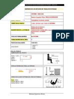 EJEMPLO FICHA DE CAMPO editable.docx
