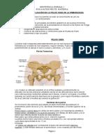evaluación de la pelvis materna.doc