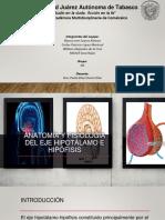Anatomía y Fisiología Del Eje Hipotalamo-hipofisis