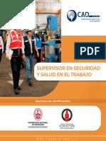 supervisor_en_seguridad_y_salud_en_el_trabajo_.pdf