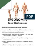 01.Ergonomia Os Sentidos Humanos