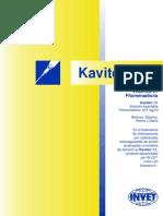 kavitex-f1 (1).pdf