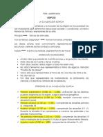 ARTE Y PATRIMONIO (EGIPCIO - MESOPOTAMIA).docx