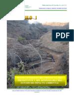 Hidroelectrica de Tacotan - Impacto Ambiental