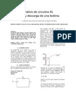 63508298-Informe-circuito-RL.docx