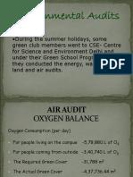 Environmental Audits (2)