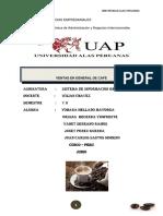 Trabajo Grupal Final Sig de Mejoramiento de Proceso de La Empresa Cocla