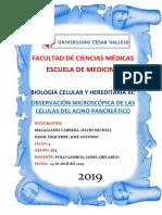 informe acino hepatico.docx