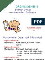 Organogenesis Review