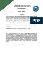 Informe de Saccharomyces Cerevisiae