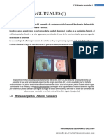 E28 Hernias Inguinales (I) REVISADA en PDF