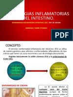 patologías  inflamatorias del intestino.