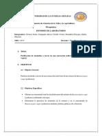 Informe 8 Purificacion de Alcaloides
