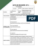 INFORME PLAN DENGUE.docx