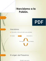 Del Narcisismo a La Pulsión