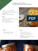 Curso Fermentación Online