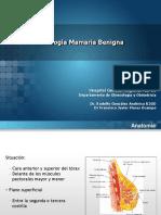 patologamamariabenigna-131209013319-phpapp02.pptx