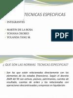 Normas Tecnicas Específicas (1)