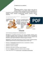 NUTRIENTES_LOS_COMPONENTES_DE_LOS_ALIMEN.docx