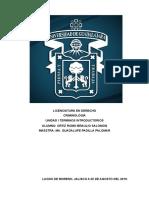 Tarea Victimologia Unidad i Braulio Salomon Ortiz Romo