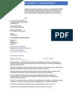 CV EJEMPLO GERENCIAS DE PLANTAS.
