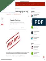 Los mejores programas antiplagio del 2019.pdf