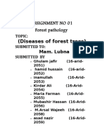 Diseases of Forest Trees-2