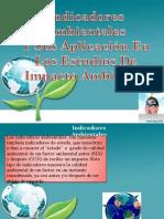 Presentacioneiaexpo Indicadoresambientalesparapublicar 120401075914 Phpapp01