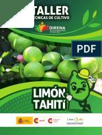 Tecnicas de cultivo Limon