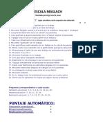 TEST BURNOUT- Maslach + Software BORNOUT