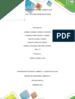 Paso2_ Planificar Programador