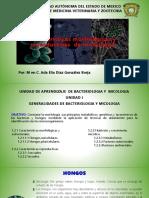 generalidades de los hongos agosto 2019.pptx