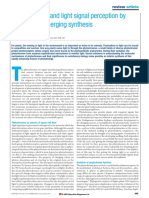 Phytochrome and Signalling