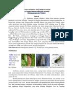 Aktivitas Insektisida Dan Kombinasi Sinergis