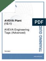 TM-3551 AVEVA Plant (12.1) Engineering - Tags (Advanced)