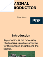 Animal Reproduction.ppt