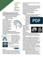 Trastornos de La Migración Neuronal