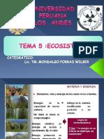 TEMA 5 ECOSISTEMA.ppt