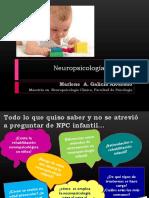 44607121-Neuropsicologia-Infantil-presentacion.ppt