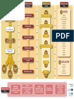 3.3 Infografia_Casos_Serrat.pdf