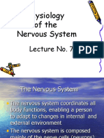 lecture7physiologyofthenervoussystem-120227064805-phpapp01