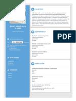 doc_resume_1547667120501