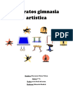 Aparatos Gimnasia Artística Florencia