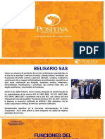 Ope Bmm 2017 Capacitación Legislación Vigente Copasst Positiva11111