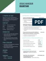 CV de Josias Mansour DIAMITANI