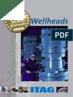 233389719-Wellheads-01.pdf