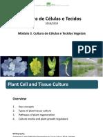 CCT Module 3 001.pdf