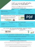 Infografia Diplomado Seguridad Social