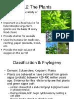 Diversity of plants